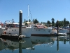 chris-craft-rendezvous-2010_58
