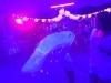 2014-ChrisCraftRendezvous-IMG_6250